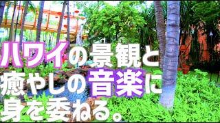 【ハワイ旅行】【4K】ハワイの景観と癒やしの音楽に身を委ねる。 2020年2月最新版 ワイキキビーチ ロイヤルハワイアンセンター ワイキキ観光 ハワイ観光 | Waikiki Hawaii