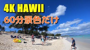 【4K・作業用】BGM、ナレーション無しのハワイの風景・景色動画を60分:Part1