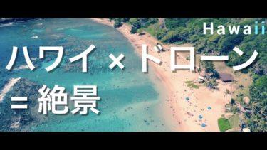 【空撮】ドローンで見るハワイが絶景すぎて最高! ハワイ旅行 ANA HAWAII ハワイ観光 ホノルル ワイキキビーチ ハナウマ湾