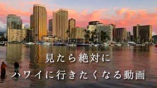 ✈️見たら絶対にハワイに行きたくなる動画!〜Hawaii movie〜