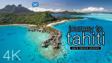 JOURNEY to TAHITI (4K UHD Nature Sounds Only) Whales & Beaches – Ambient Film for Relaxation