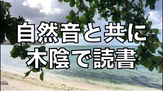 [作業用] グアムのビーチの木陰から自然音のみの垂れ流し動画