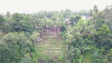 【ドローン空撮】死ぬまでに行きたい!世界の絶景ブランコ@バリ島