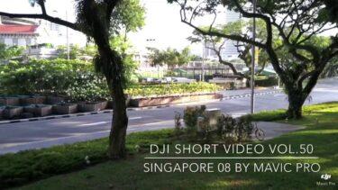 Birds View Log 50 by Mavic Pro @  Singapore 🇸🇬/シンガポール街中ドローンで空撮してみた