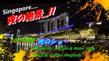 【シンガポール絶景夜景】感激Impressive!光と音のシンガポールSingapore