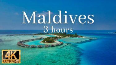 【モルディブの海 4k映像】癒しの波の音3時間、モルディブ旅行気分(ヨガ・読書・勉強・作業用BGM)|Maldives travel drone  4k video