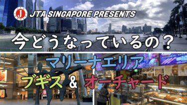 シンガポール マリーナエリアをドローン撮影‼ ブギスやオーチャードは「今」どうなっている??/Singapore Aerial Drone Shooting