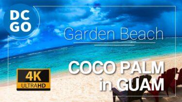 【4K|BGM】YOLO|素敵すぎるココパームガーデンビーチ|#グアム|COCO PALM in GUAM DCGO-Produce