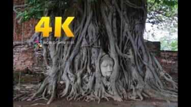"""#090 """"Ayutthaya, Thailand"""" in 4K (古都 アユタヤ/タイ王国)世界一周37カ国目"""
