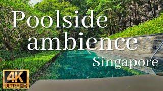 【シンガポールの隠れ家】プールサイド4K映像と癒しの自然音 3時間(読書・勉強・作業用BGM)|Singapore capella hotel poolside relaxing ambience