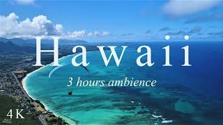 【ハワイ 4K】南国ハワイ癒しの波音・森の音、ヒーリングBGM|空撮4K風景映像|旅行 海|Hawaii relaxing video | Hawaii relaxing ocean sounds