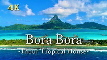 4K【トロピカルハウス】ビーチの4K映像と海の自然音|タヒチ|勉強用・作業用BGM